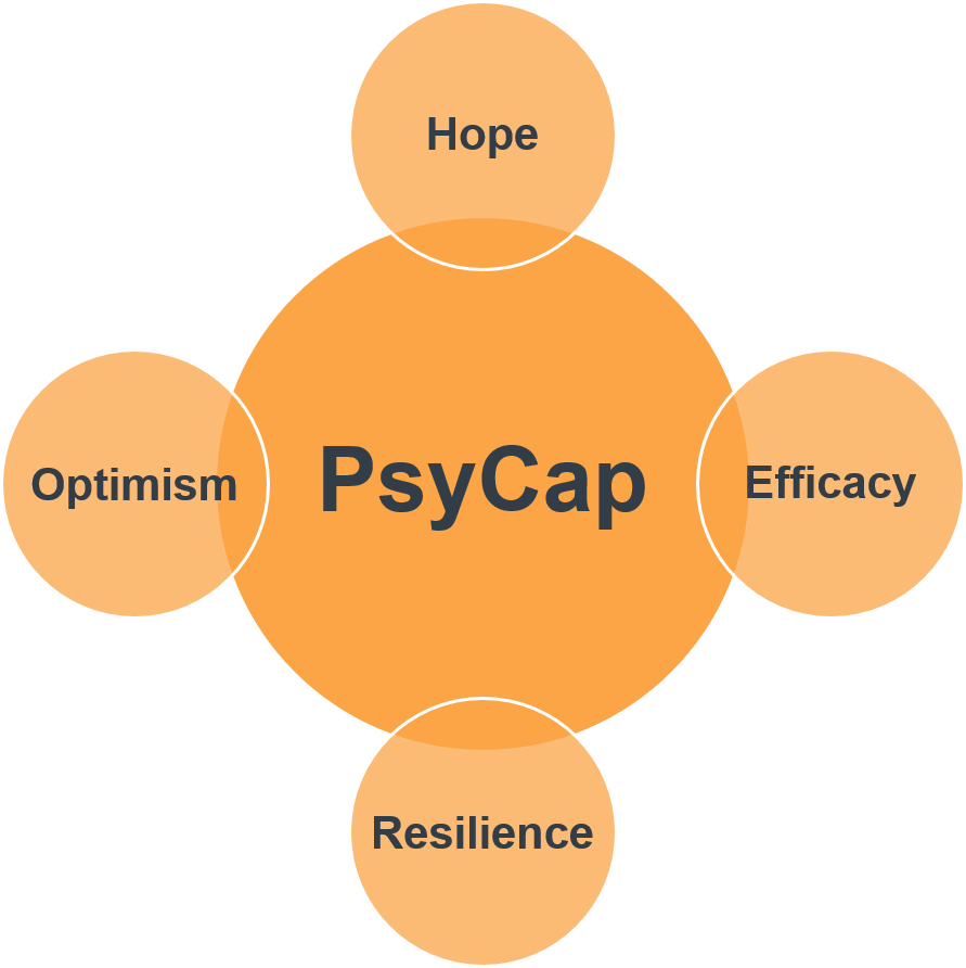 PsyCap scales: Hope, Efficacy, Resilience, and Optimism